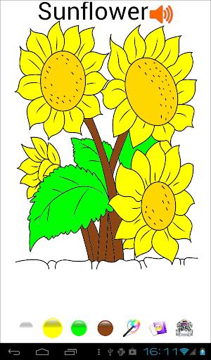 孩子着色和学习花类