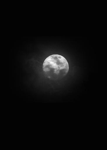 Moonlight sky Live Wallpaper