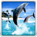 Dolphin HD Live Wallpaper icon