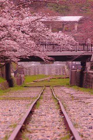 新幹線列車拼圖
