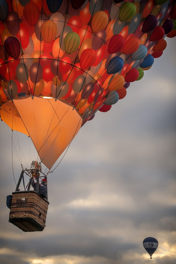 The thrill of the chase! by Julian Pett - Transportation Other ( hot air, fly, inflatable, ashton court, mass ascent, fiesta, chase, blimp, balloon, race, bristol )