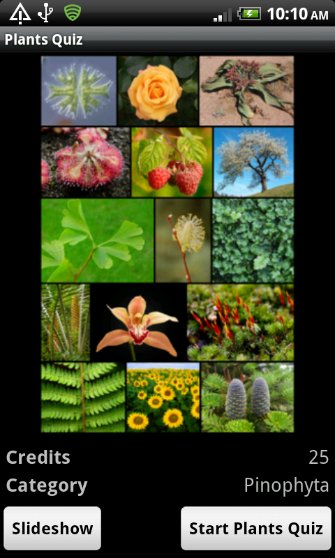 Plants Quiz - for botanists- screenshot