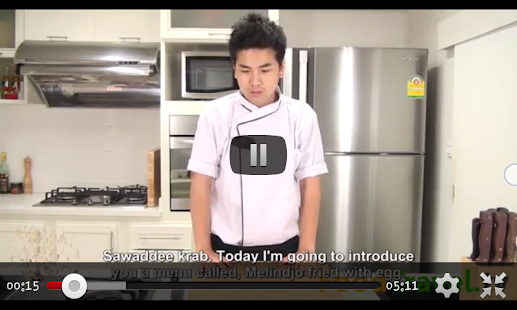 Thai Cuisine Recipes(VDO) - screenshot thumbnail