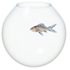 The Fish Bowl icon