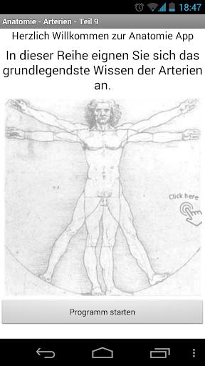 Anatomie - Arterien