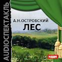 Аудиокнига Лес icon