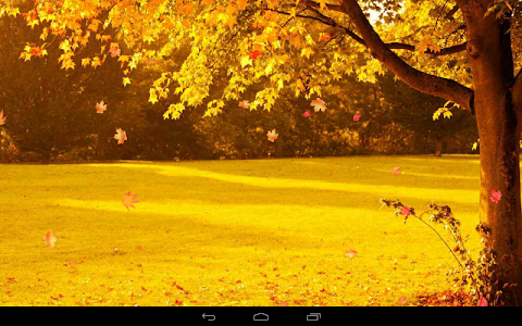 Autumn Wallpaper screenshot 11