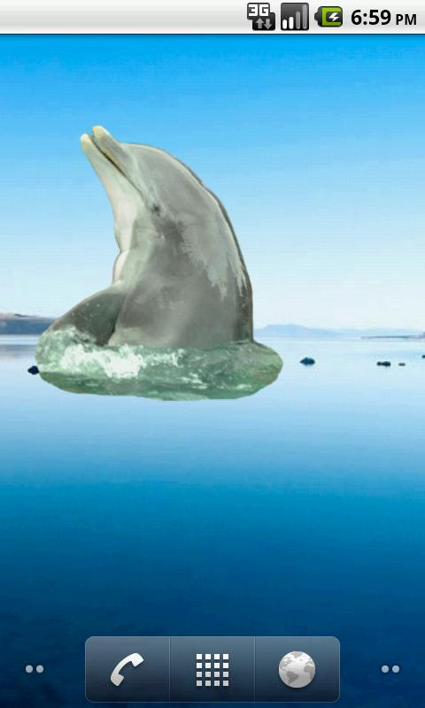 Dolphin Sticker - screenshot