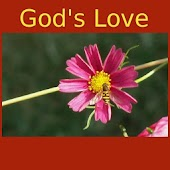 God's Love -Quotes&Meditations