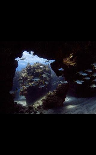 Great Barrier Reef Wallpaper