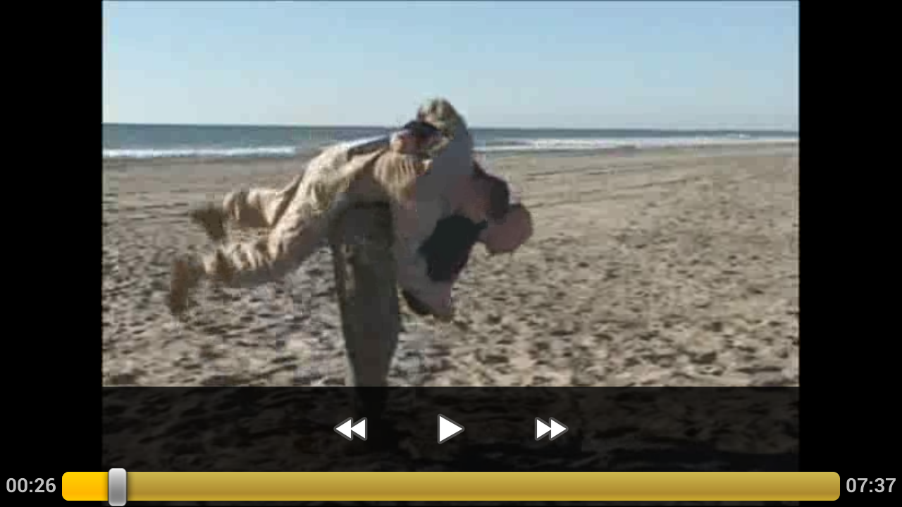 Marine Corps Martial Arts II - screenshot