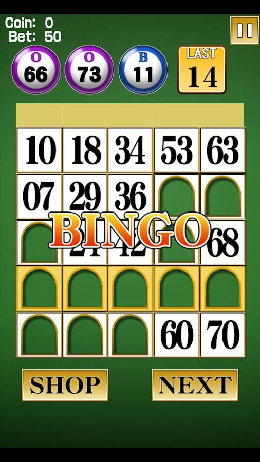 Bingo - screenshot