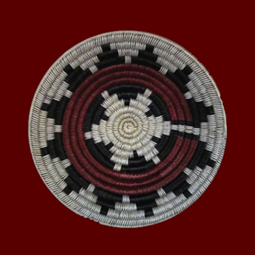 Speak Navajo Volume 1 Language