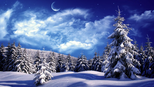 Winter HD Live Wallpaper