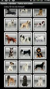 Hundar i Världen: Fakta&Bilder - screenshot thumbnail