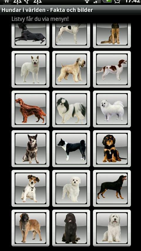 Hundar i Världen: Fakta&Bilder - screenshot