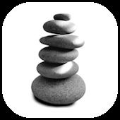 StonewayBizPro FMR LinkApp