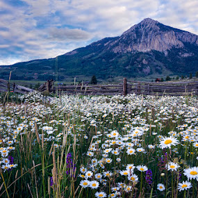 Crested Butte Mtn. by James McGinley - Landscapes Mountains & Hills