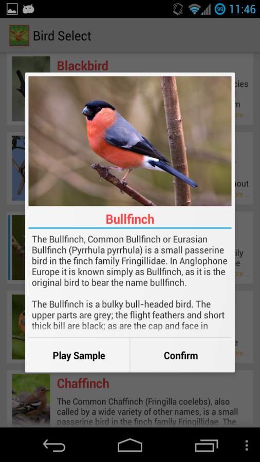 Bird Quiz Alarm Clock Premium- screenshot