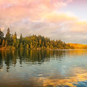 Season through season by Gabriel Cabrera - Landscapes Forests ( portland, sunset, landscape, woods, river )