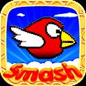 Smash Birds: Free Cool Game