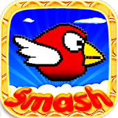 Smash Birds: Free Cool Game