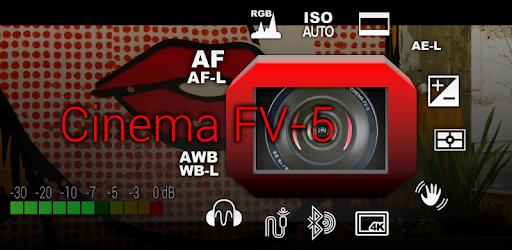 мануал на русском camera fv-5
