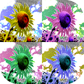 Art Serigraphy-Art Filter App-
