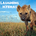 Laughing Hyenas icon