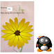 Baby Color books-Flower