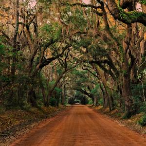 Botany Bay Road.jpg