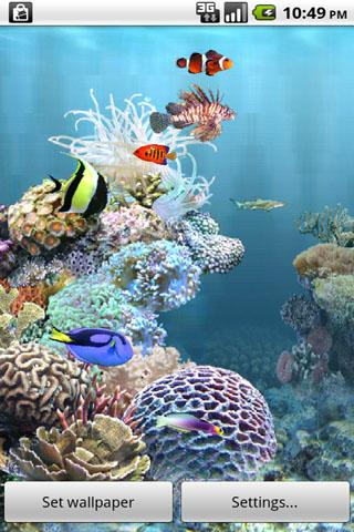 aniPet Aquarium Live Wallpaper - screenshot