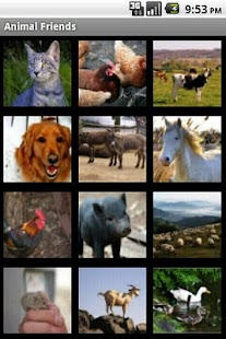 Animal Friends - screenshot thumbnail