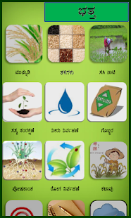 Rice Kannada - náhled