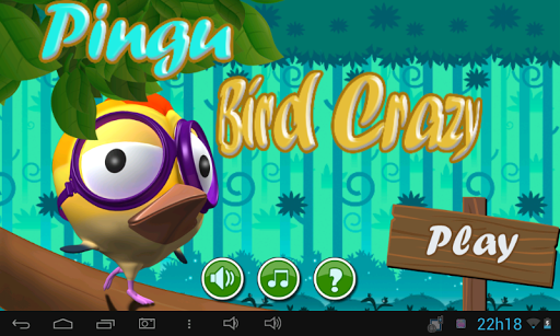 Pingu Bird Crazy