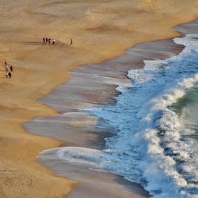 Nazaré Beach, Portugal by João Branquinho - Landscapes Beaches ( praia, nazaré, nazare, beach, portugal, surf )
