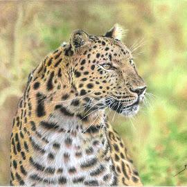 by Kile Zabala - Drawing All Drawing ( leopardo, felinos, animales )