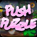 Push Puzzle icon