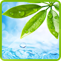 Nature Water Wallpaper icon