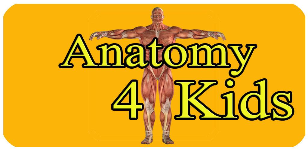 Download Kinder Lernen Die Menschliche Anatomie Apk Latest Version ...