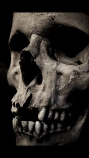Skull Wallpapers - screenshot thumbnail