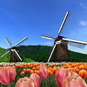 Tulip Fields 360°Trial icon