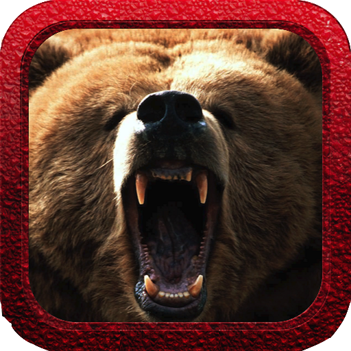 Bear Hunter Reloaded LOGO-APP點子