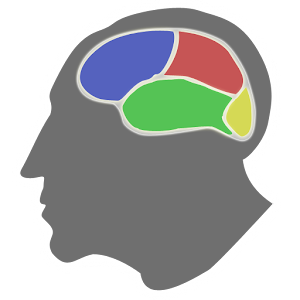 Brain Optimizer for PC and MAC