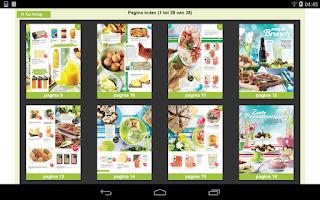 Screenshot of Magazine van PLUS