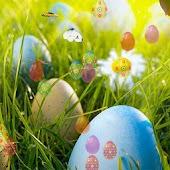 Easter Flowers Livewallpaper