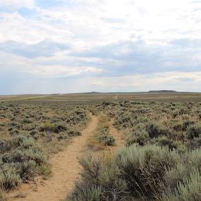the Oregon Trail by Tamara Koontz - Landscapes Prairies, Meadows & Fields ( path, nature, landscape )