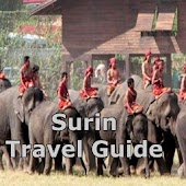 Surin Travel Guide