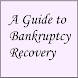 A Guide to Bankruptcy Recovery