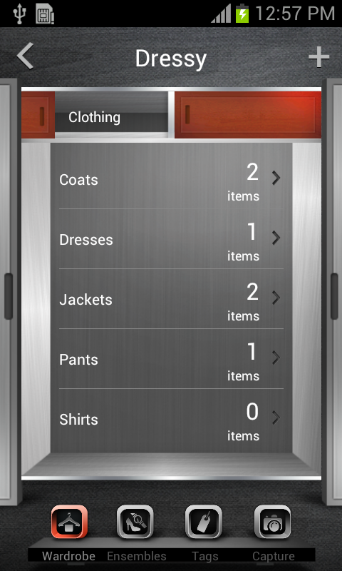 Wardrobe Organizer- screenshot